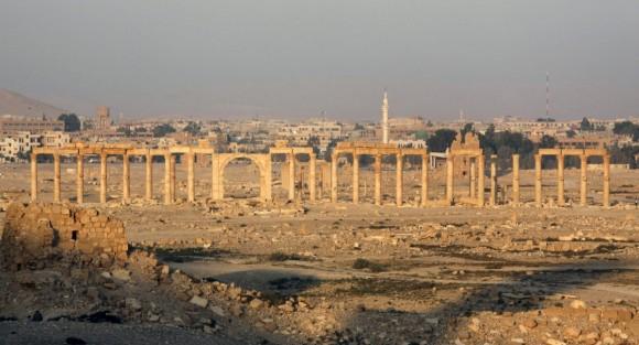 Palmira (8)