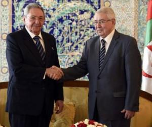 Raúl inició visita oficial a Argelia.