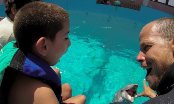 Terapia con delfines entrenados en el Acuario Nacional de Cuba. Foto: Adalberto Roque/ AFP.