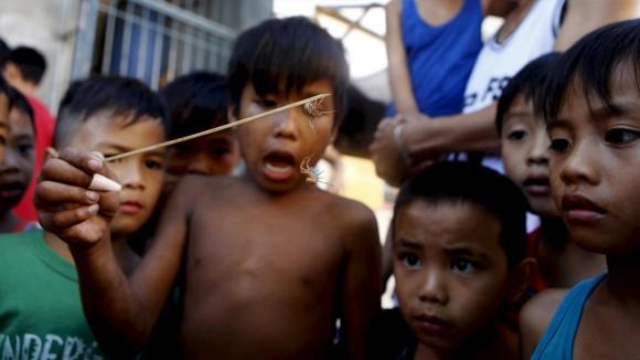 Unos niños miran una pelea de arañas en Las Pinas, Filipinas. La apuesta con arañas, legales e ilegales, es una de las actividades más populares entre los niños filipinos que van al colegio. En el país, las apuestas de todo tipo atraen a ricos y pobres por igual. Foto: Reuters