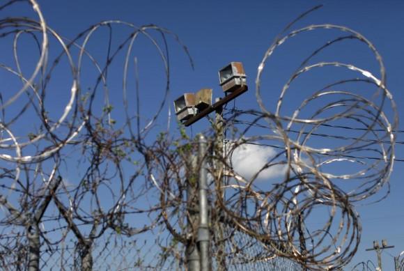 Las plantas crecen en el alambre de púas en Camp X-Ray, una prisión anteriormente utilizado a los detenidos de las casas en la base naval estadounidense de Guantánamo, 07 de marzo 2013. Foto: Bob Strong/ Reuters.