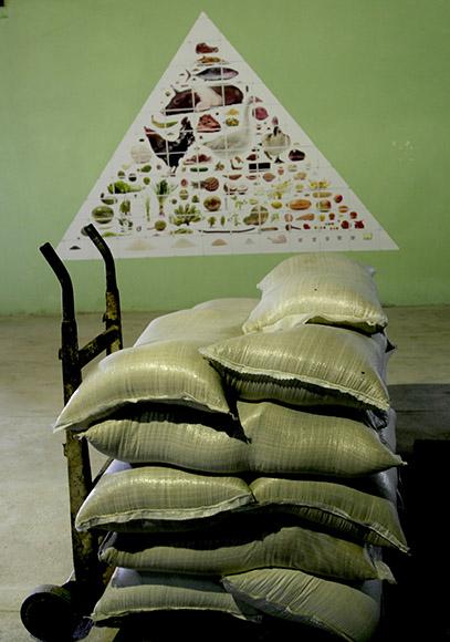 Cadena alimenticia, de Uli Westphal. Foto: Ismael Francisco/ Cubadebate