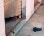 bomba en sede de Alianza PAIS