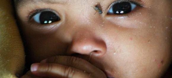 Mortalidad infantil en franja de gaza