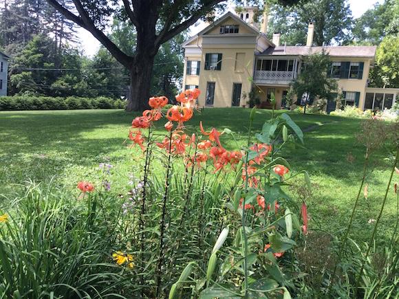El jardín de Emily Dickinson.