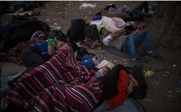 Niños refugiados duermen en un parque de Belgrado, Serbia, en la espera de tener una oportunidad para atravesar la frontera con Hungría. Foto Ap.