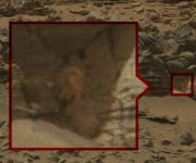 """Por años, los teóricos de las conspiraciones –con vista de lince– han buscado detenidamente en las fotos que transmitió la sonda de la NASA a la Tierra y han """"descubierto"""" misteriosos objetos que dicen que prueban la existencia de actividad extraterrestre en Marte."""