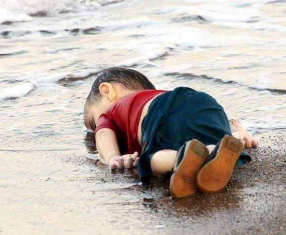 Bebé sirio