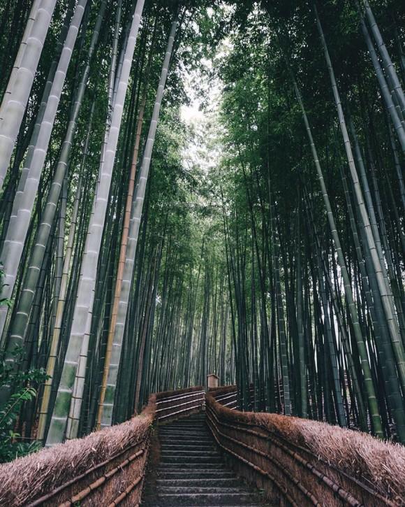 Japón (3)