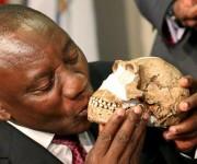 Presidente de Sudáfrica besa el cráneo de un Homo naledi. Foto: Reuters