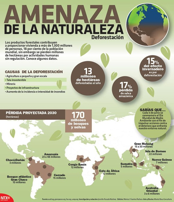 deforestacion + inforgrafía