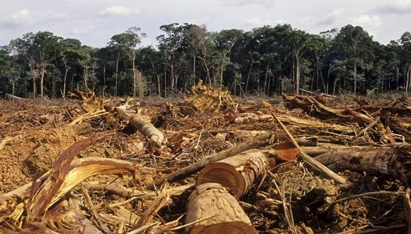 La deforestación o conversión forestal es un fenómeno difícil de medir, incluso mediante imágenes satelitales, y al mismo tiempo complicado debido a que las ganancias y pérdidas de bosque ocurren continuamente.