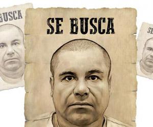 Pese a recibir dos heridas de bala, el Chapo sigue desaparecido.