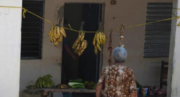 ¿Y aquí no vende nadie?. Foto: Ismael Francisco/ Cubadebate.