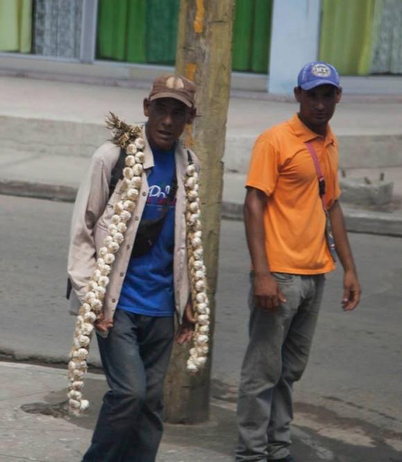 ¡La buena ristra de ajo!. Foto: Ismael Francisco/ Cubadebate.