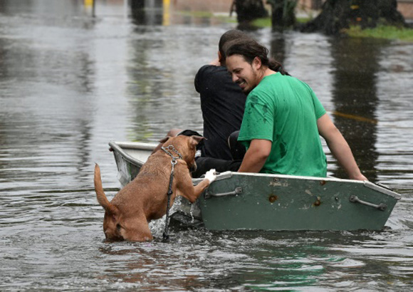 Las lluvias récord dejaron este domingo vastas zonas del sureste de Estados Unidos bajo el agua. Foto: AFP.
