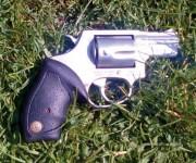 Perp Gun.jpg