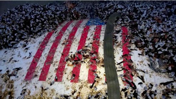 La bandera de Estados Unidos se puede ver en los restos encontrados en la isla de Tresco. Foto: Agencia Martima y de Guardacostas.