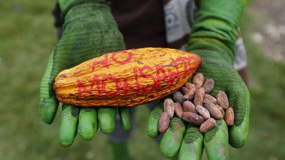 Un manifestante participa en una protesta contra Monsanto en Bogotá, Colombia. Foto: Reuters