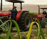 America latina productora de alimentos
