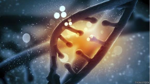 El método de edición genética se considera un hito, ya que simplifica y hace más precisa la terapia génica. Foto: Thinkstock.