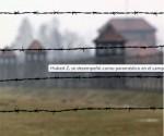 campo concentración
