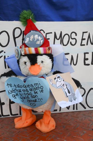 Un pingüino de peluche. Foto: Kaloian/Cubadebate.