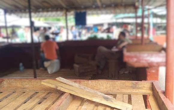 Agro EJT (Ejercito Juvenil del Trabajo) de Tulipán. Foto: Luis Eduardo Domínguez/ Cubadebate.