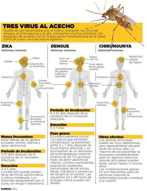 Infografía: Zika, dengue, Chikunguya