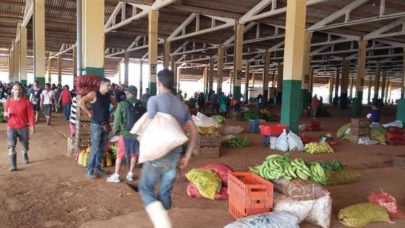 El Trigal, mercado mayorista de productos del campo. Foto: Darío Alejandro Alemán/Cubadebate.