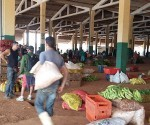 precios-alimentos-el-trigal-mercado-mayorista-3
