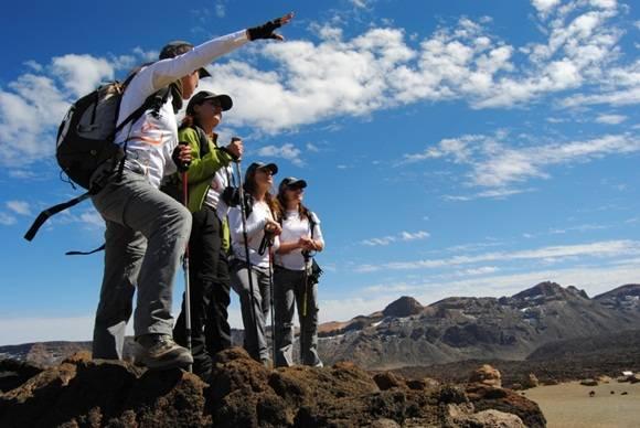 En 2015, las llegadas de turistas internacionales crecieron un 4,7 por ciento, hasta 1.184 millones, situándose como el sexto año consecutivo de crecimiento.