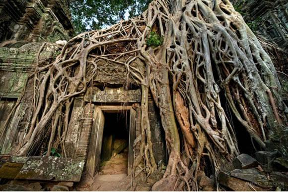 Antigua construcción en Angkor, Camboya. Foto: @BradGrove.