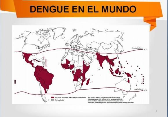 Dengue en el mundo