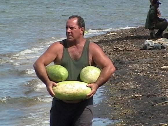 Melones, en la Isla de la Juventud. Foto: Arlehenry / Cubadebate