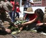 Venezuela 100 dias agricultura_urbana_