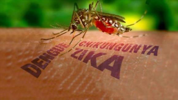 Autoridades sanitarias de Cuba llaman a extremar medidas contra el zika
