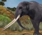 colmillo elefante