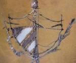escudo mambí de kcho