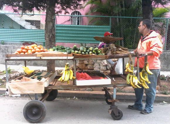 En La Habana conviven actualmente alrededor de 1777 carretilleros inscritos de forma legal, unidos a otro tanto que son ilegales. Foto: María del Carmen Ramón.