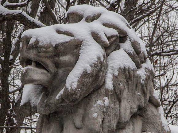 """El puente está """"custodiada"""" por cuatro grandes leones machos, dos en cada extremo del puente (cada una aprox. 7 ft. X 6 pies. 6 pulg. X 13 ft.). Dos de los leones descansan sobre cuatro patas, con la cabeza inclinada hacia arriba y la boca ligeramente abierta mientras que el otro par mentira con los ojos cerrados, aparentemente durmiendo. Ellos fueron originalmente diseñados y esculpidos por Roland Hinton Perry en 1906 en hormigón fundido (el puente en su conjunto es uno de los primeros puentes de hormigón fundido en el país) y se instalaron en 1907. En 1964, los leones fueron restaurados y impermeabilizado por Washington escultor basado Renato Luccetti, aunque esta restauración resultó ser menos de un éxito completo. Cuando una importante rehabilitación del puente comenzó en 1993, los leones, que estaban en muy mal estado, fueron retirados para su posterior restauración. Es posible que hayan sido almacenados en el túnel de Derechos de aire en dirección sur I-395, aunque esto no está claro. Las esculturas se encontraron por fin estar más allá de la restauración. [6] El escultor Reinaldo López-Carrizo de la restauración profesional eventualmente produjo moldes basados en las esculturas y fotografías existentes, y los utilizó para emitir nuevas esculturas de leones hormigón que se instalaron en el puente en julio y agosto de 2000. [7] Los mismos moldes se utilizaron para leones de bronce fundido instalados en la entrada principal peatonal al parque zoológico nacional más al norte en la avenida Connecticut en 2002. Foto: Ismael Francisco/ Cubadebate"""