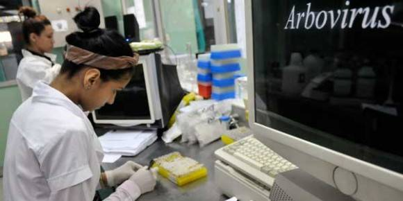 Investigadoras del laboratorio de arbovirus del IPK ahondan en el estudio de las cepas cubanas aisladas durante las epidemias de dengue en busca de nuevas respuestas. Foto Leyva Benítez/ Bohemia.
