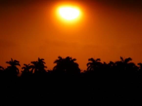 Sol sobre palmeras. Foto: Yarko Hernandez Mendez / Cubadebate