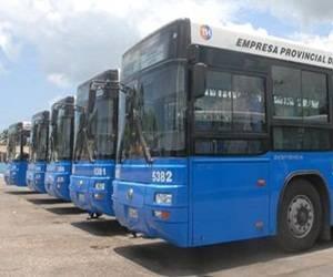 omnibus transito