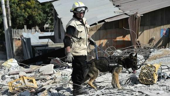 Un brigadista mexicano y su perro de rescate buscan sobrevivientes en los escombros en Pedernales, Ecuador. Foto: AFP