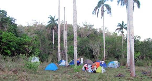 acampada 6