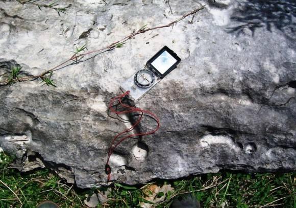 Caibarien Hipoestratotipo Eoceno Medio-Inferior  Villa Clara Foto: Lisette L. Arias Ceruelos Esp. Comunicación y Marketing IGP, Servicio Geológico de Cuba