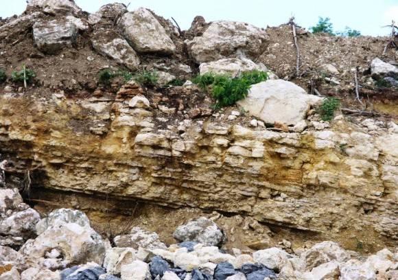 Cantabria Holoestratotipo Cretácico Superior Maastrichtiano  Cienfuegos.  Foto: . Lisette L. Arias Ceruelos Esp. Comunicación y Marketing IGP, Servicio Geológico de Cuba / Cubadebate