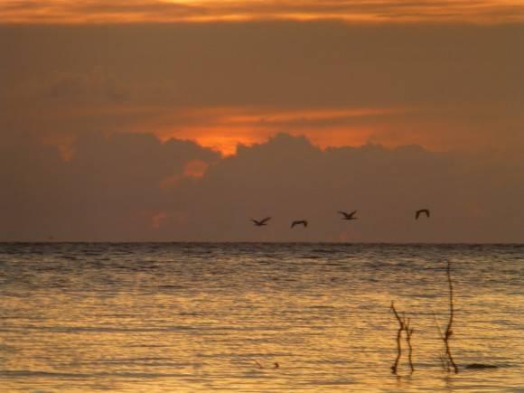 Amanecer en Playa Sierra Morena,Corralillo, Villa Clara. Foto: Yarko Hernández / Cubadebate
