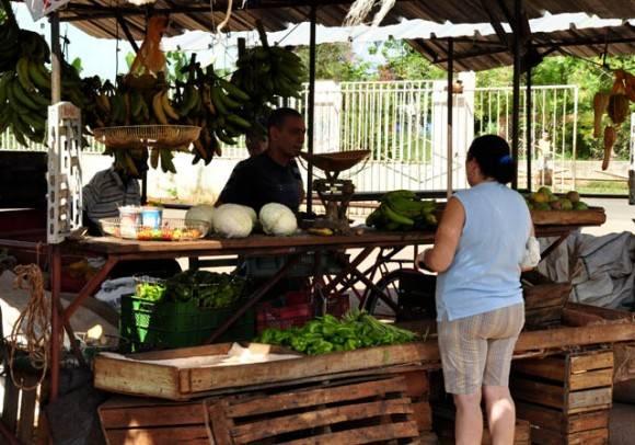 Oreden y limpieza en sus Agros. Foto: Roberto Garaicoa Martínez/ Cubadebate.